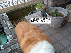 2009_0910_132623dscf0012_2