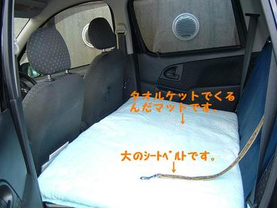 2010_1121_130237dscf0001_2