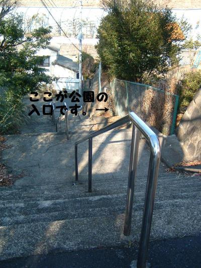2011_0222_082919dscf0030