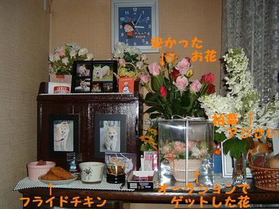 2011_0616_150340dscf0004