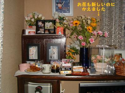 2011_0629_004458dscf0007
