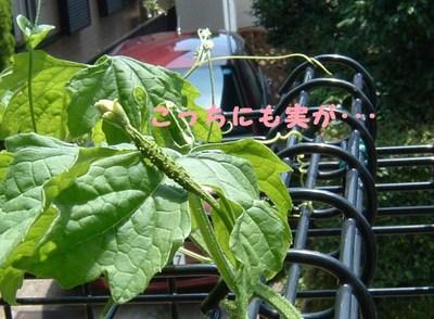 2011_0724_232936dscf0004_2