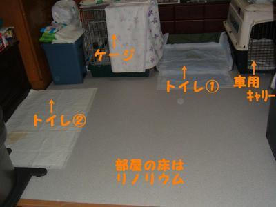 2011_0904_064748dscf0005_4