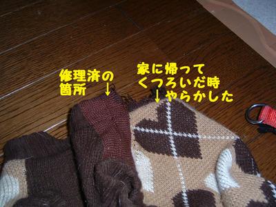 2012_0111_182645dscf0009